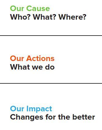 Nonprofit Business Plan - Michigan Reach Out!